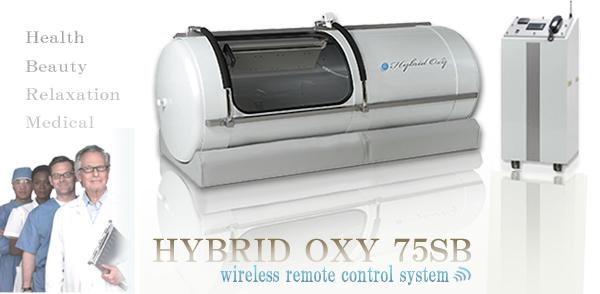 HYBRIDOXY75SB Empire Hotel