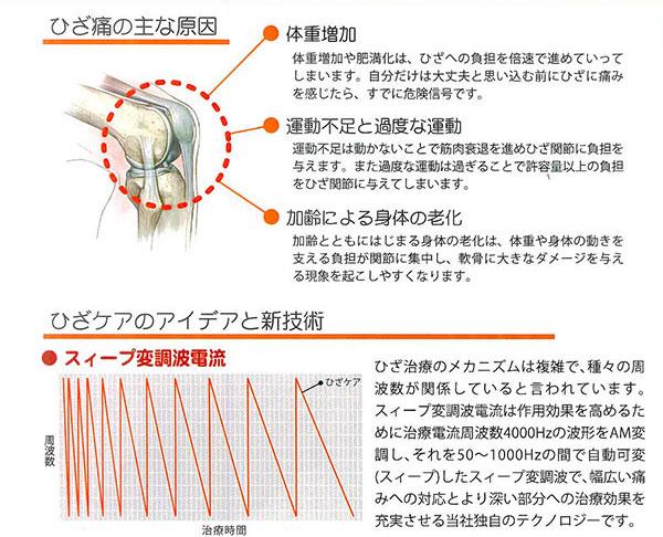 ひざ痛の主な原因は、●体重増加●運動不足と過度な運動●加齢による身体の老化